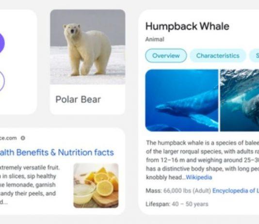 Google projeta mudanças no formato de pesquisa em dispositivos moveis
